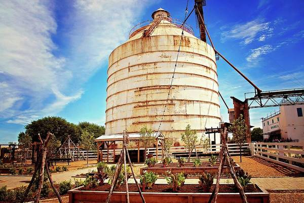 Photograph - The Silos At Magnolia Market by Lynn Bauer