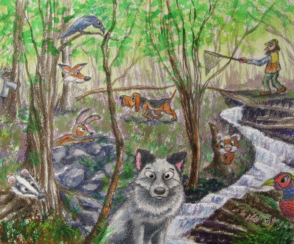 Ferrets Drawing - The Silver Hair Fox Book Cover by Diane Quee