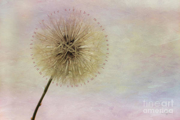 The Simplest Things Art Print