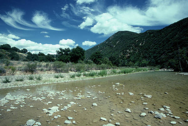 San Rafael Wilderness Photograph - The Sisquoc River by Soli Deo Gloria Wilderness And Wildlife Photography