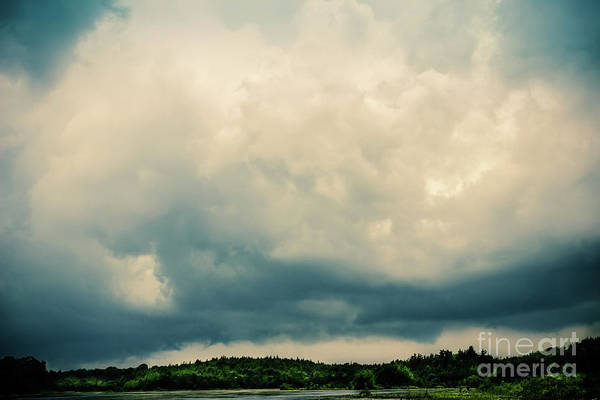 Kammerer Wall Art - Photograph - The Sky Is Falling by Colleen Kammerer
