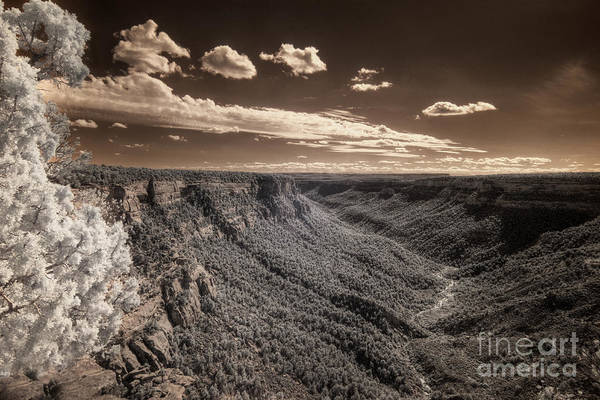 High Dynamic Range Digital Art - The Sky Tilts Down To The Canyon by William Fields