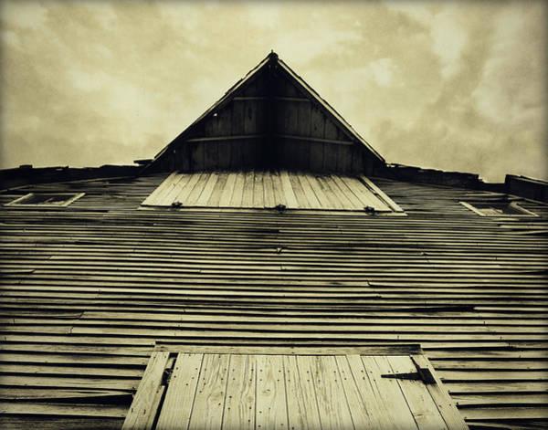 Photograph - The Skys The Limit by Julie Hamilton