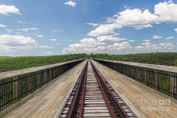 Photograph - The Skywalk by Jim Lepard