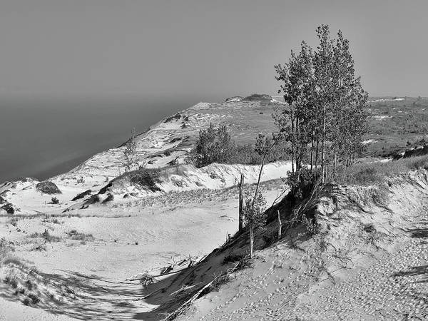Photograph - The Sleeping Bears Of Sleeping Bear Dunes National Lakeshore by Digital Photographic Arts