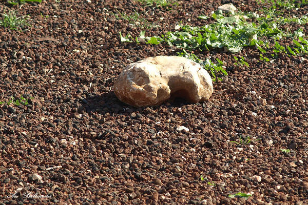 The Sleeping Stone. Art Print