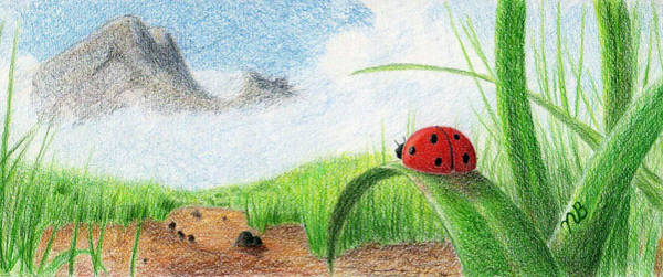Lady Bug Drawing - The Small Things by Nils Bifano