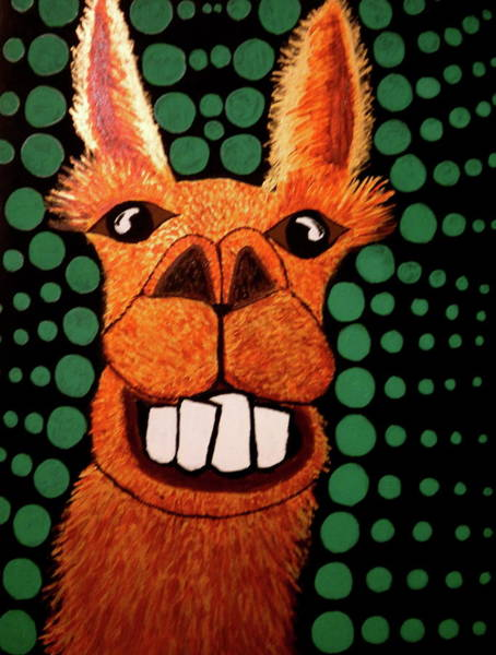 Alpaca Painting - The Smiling Llama by Nick Reaves
