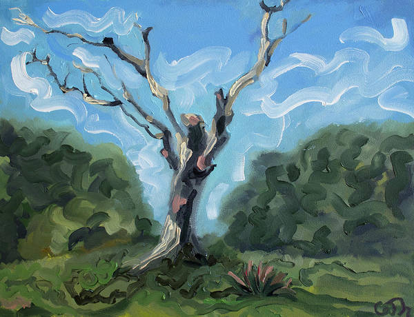 Painting - The Snag On The Hill Westport Mayo Ireland by Catherine Considine