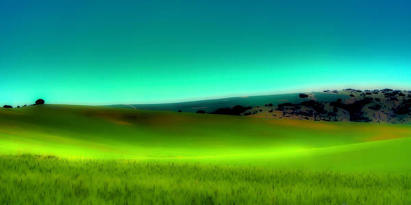 Wall Art - Photograph - The Soft Rolling Hills Of The Palouse by David Patterson
