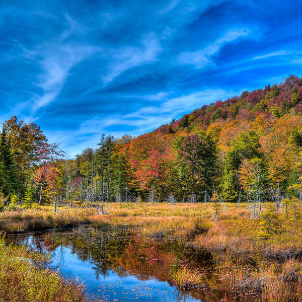 Photograph - The South End Of Bald Mountain Pond by David Patterson