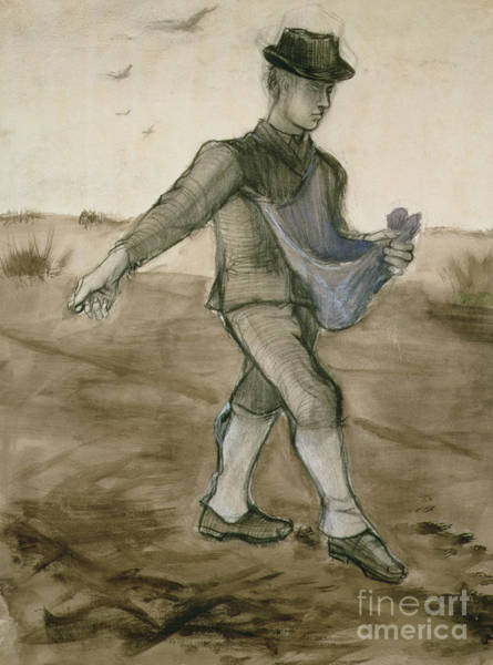 Wall Art - Drawing - The Sower, 1881 by Vincent Van Gogh