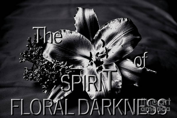 Photograph - The Spirit Of Floral Darkness by Silva Wischeropp