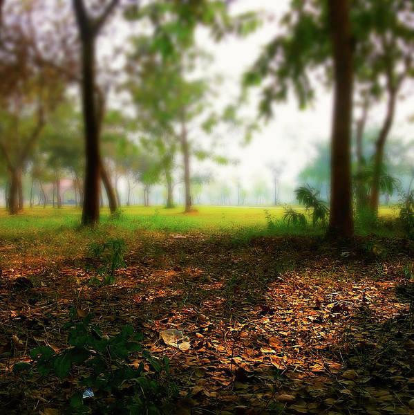 Photograph - The Spot by Atullya N Srivastava