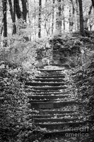 Photograph - The Stairs by Viviana Nadowski