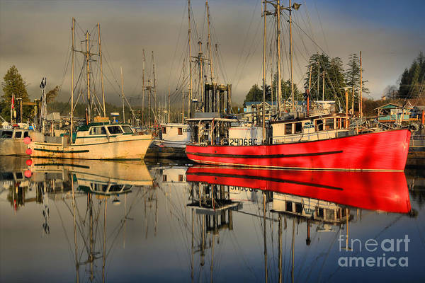 Port Of Vancouver Wall Art - Photograph - The Standout by Adam Jewell