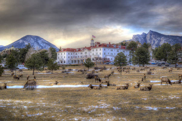 Wall Art - Photograph - The Stanley With Elk by G Wigler