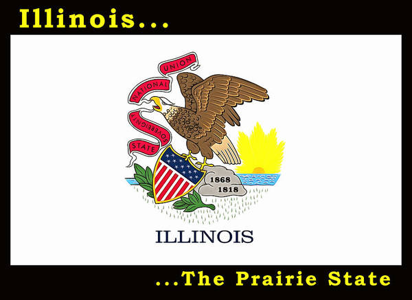 Painting - The State Flag Of Illinois by Floyd Snyder