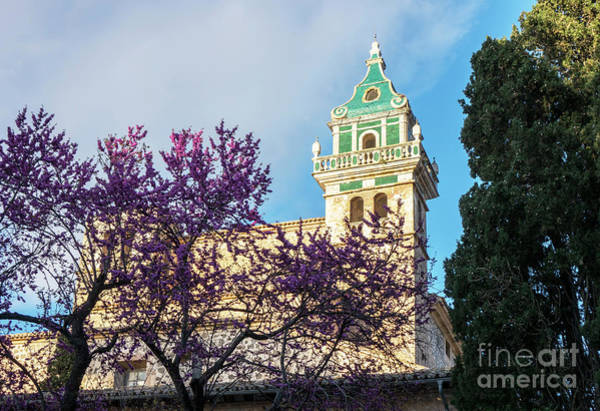 Carthusian Photograph - The Steeple Of The Valldemossa Charterhouse In Spring by Kenneth Lempert