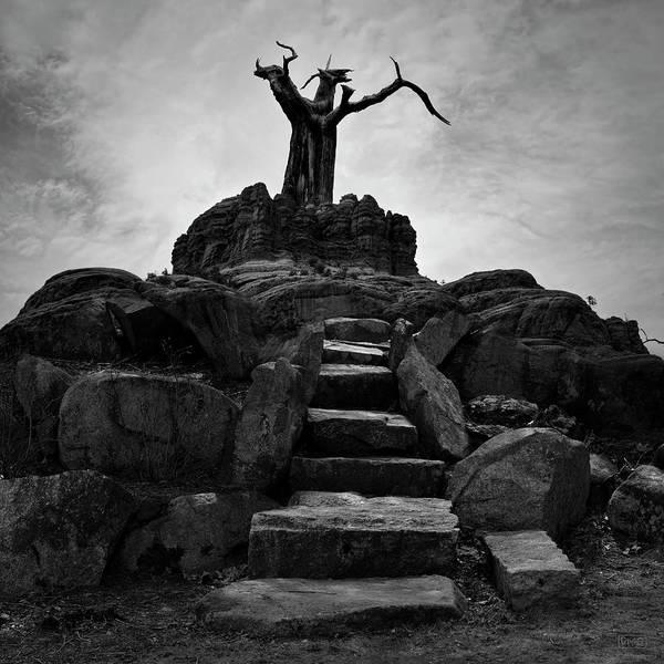 Photograph - The Stone Steps II Bw by David Gordon