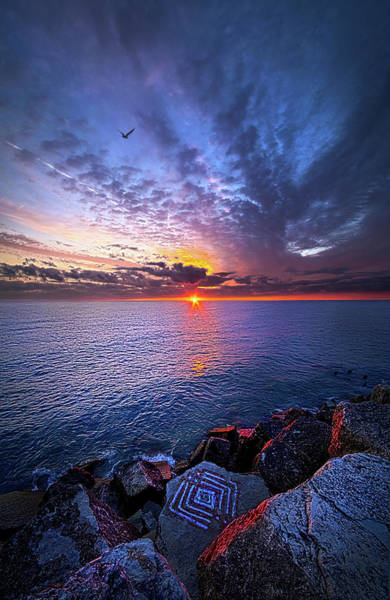 Photograph - The Stories You Tell by Phil Koch