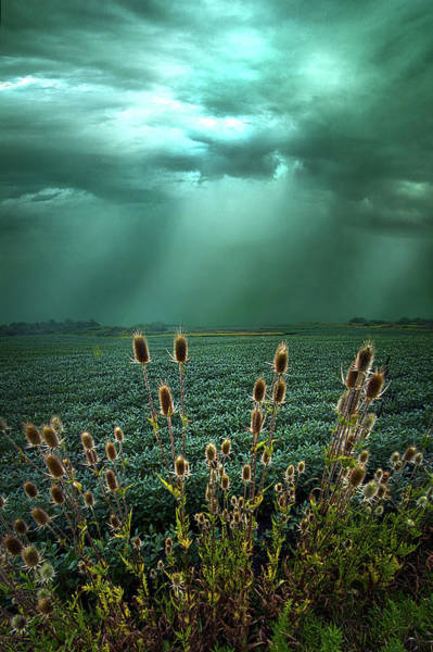 Photograph - The Storm Before The Calm by Phil Koch
