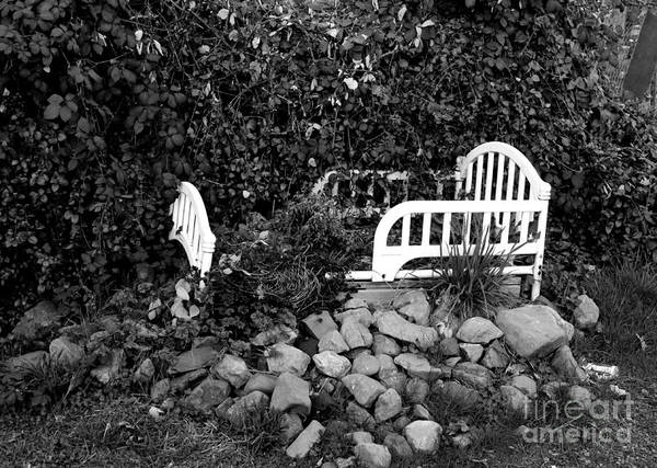 Photograph - The Story Is Black And White by Marie Neder