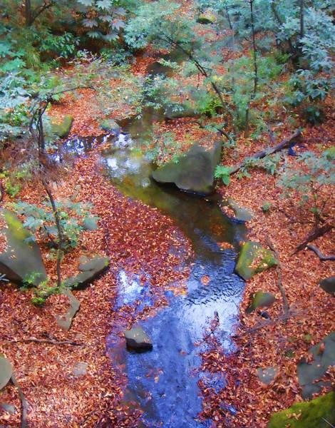 Photograph - The Stream by Roberto Alamino