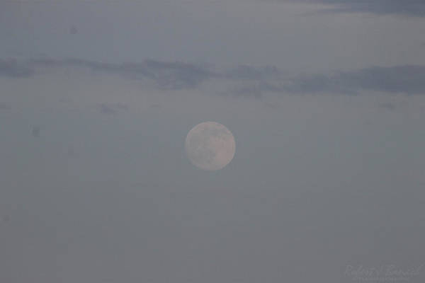 Photograph - The Subtle Shine Of The Moon by Robert Banach