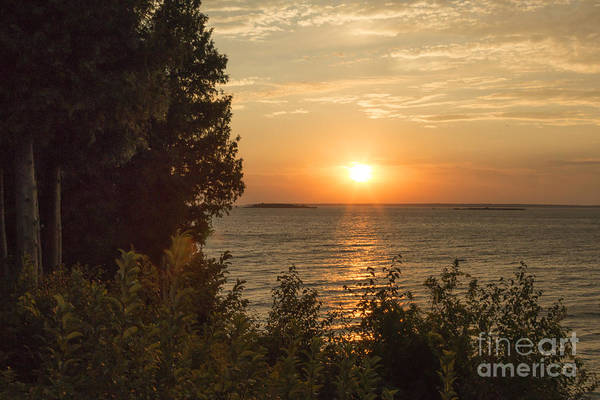 Wall Art - Photograph - The Sun Is Setting by Margie Hurwich