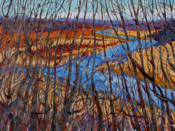 Stratocumulus Painting - The Sun Of Jones Creek by Phil Chadwick