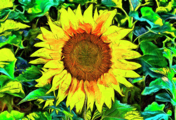 Digital Art - The Sunflower by Mark Kiver