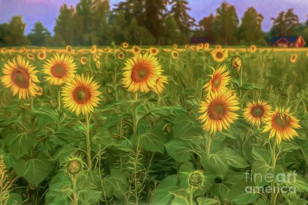 Painterly Digital Art - The Sunniest Field by Veikko Suikkanen