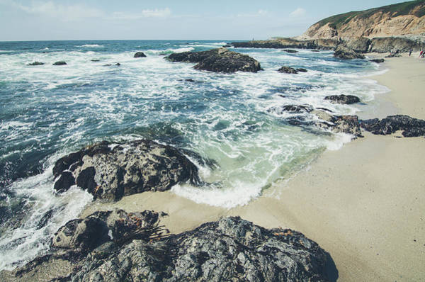 Photograph - The Sunny Shoreline  by Margaret Pitcher