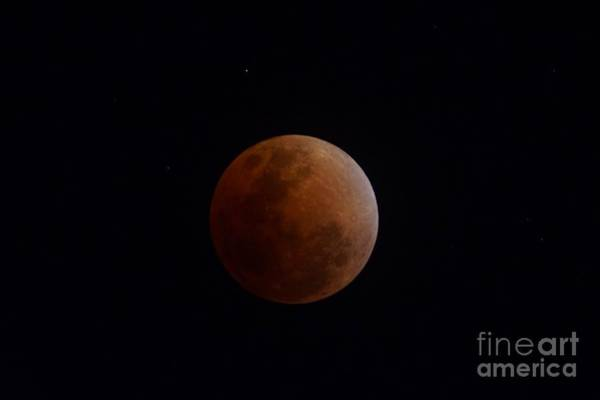Photograph - The Super Blue Blood Moon In Total Eclipse by Christopher Shellhammer