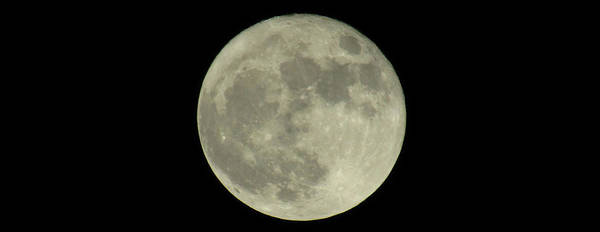 Photograph - The Super Moon 3 by Robert Knight