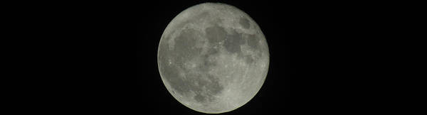 Photograph - The Super Moon 4 by Robert Knight
