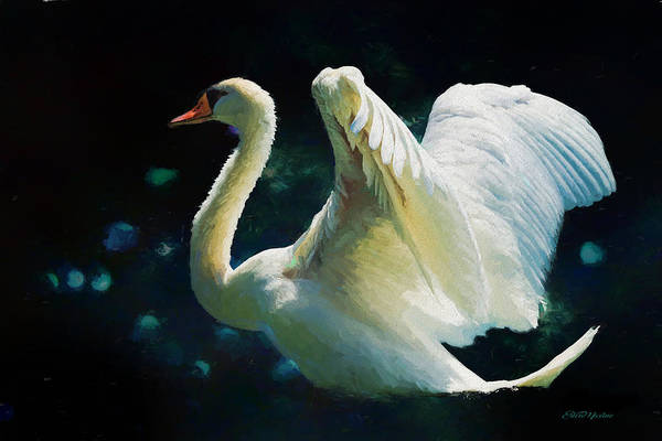Painting - The Swan - Painting by Ericamaxine Price