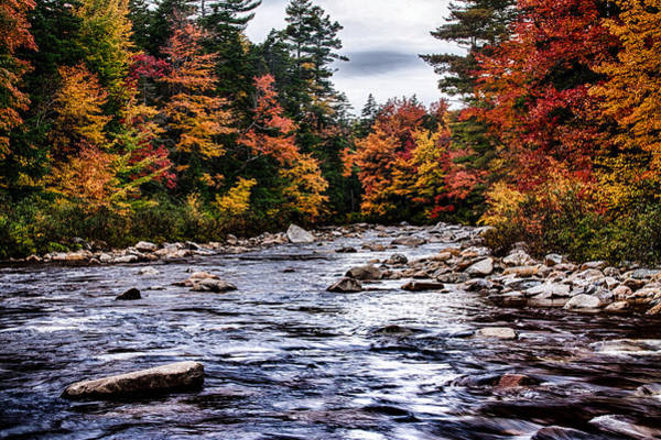 Photograph - The Swiftriver Through The Fall Colors by Jeff Folger