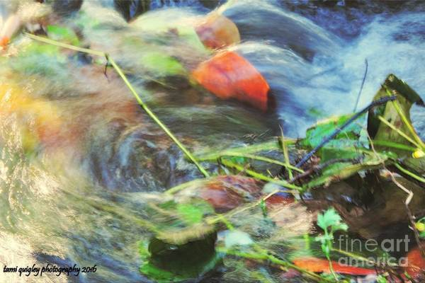 Helen Hunt Falls Photograph - The Swirl Of It All by Tami Quigley