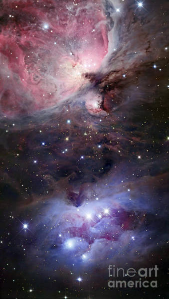 Photograph - The Sword Of Orion by Robert Gendler