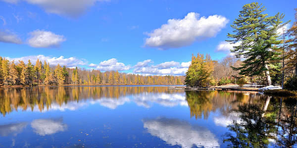 Photograph - The Tamaracks At Woodcraft by David Patterson