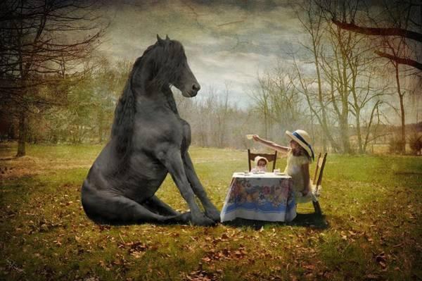 Friesian Horse Photograph - The Tea Party by Fran J Scott