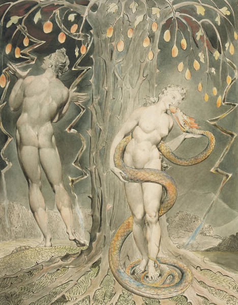 Painting - The Temptation And Fall Of Eve by William Blake