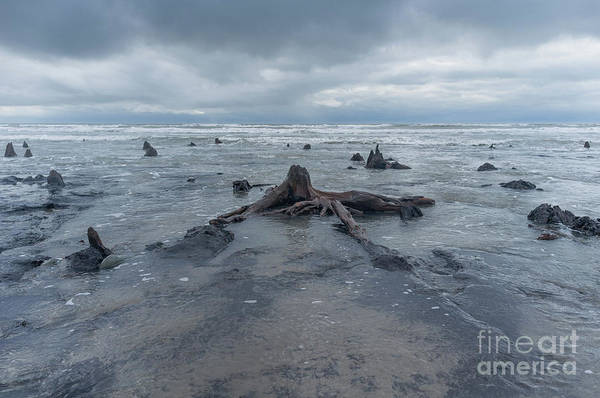 Photograph - The Tide Comes In Over The Bronze Age Sunken Forest At Borth On The West Wales Coast Uk by Keith Morris