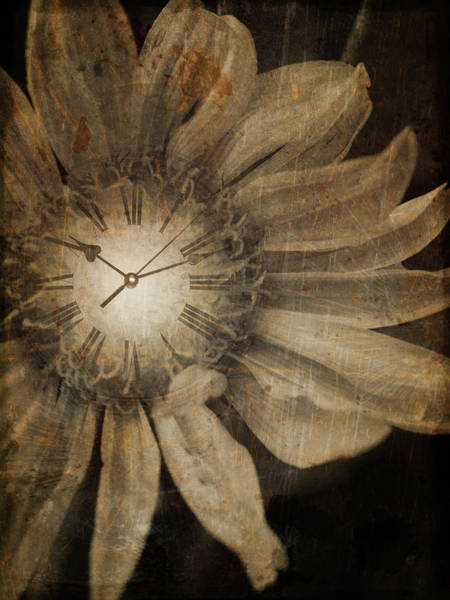Photograph - The Time Keeper by Tara Turner