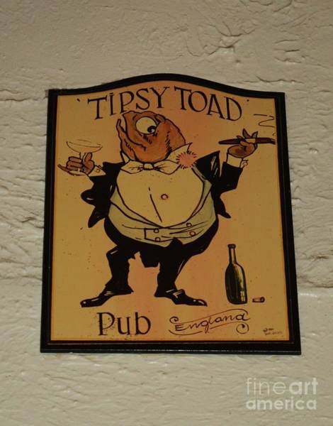Wall Art - Photograph - The Tipsy Toad Sign by Poet's Eye