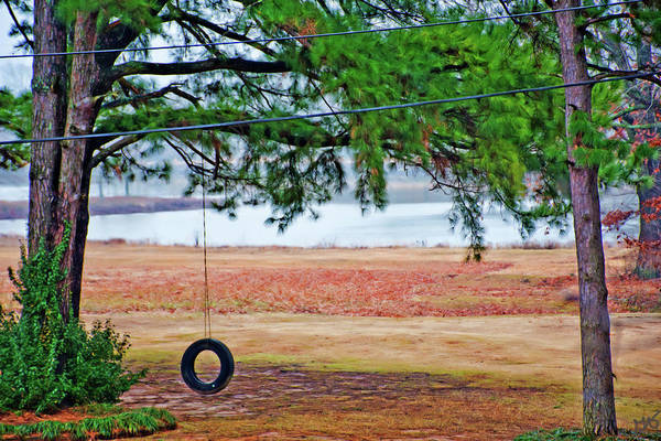 Photograph - The Tire Swing by Gina O'Brien