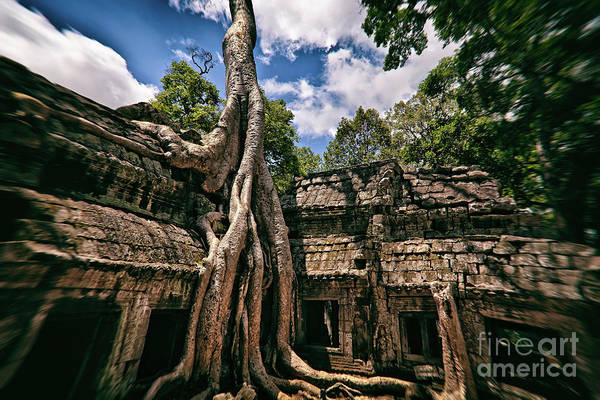 Photograph - The Tomb Raider Temple At Ta Prohm, Angkor Archaeological Park, Cambodia by Sam Antonio Photography