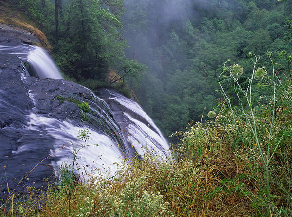 Photograph - The Top Of Golden Falls by Robert Potts